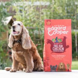 Dog sat next to bag of dog food